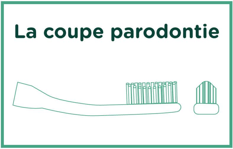 Brosse à dents paradontie